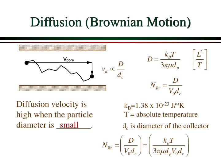Diffusion (Brownian Motion)