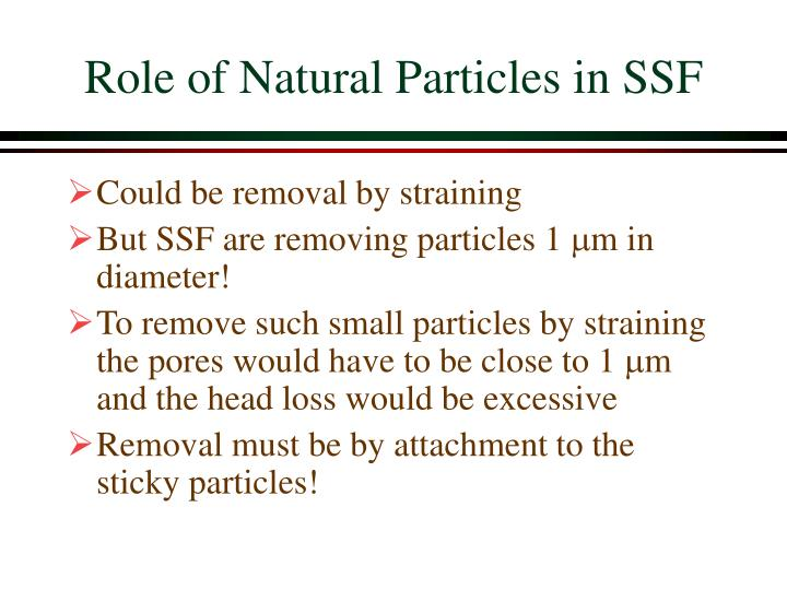 Role of Natural Particles in SSF