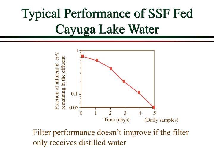 Typical Performance of SSF Fed Cayuga Lake Water