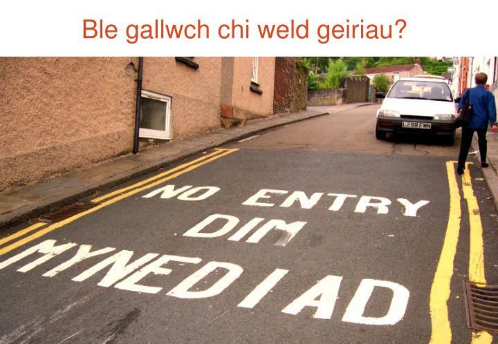 Ble gallwch chi weld geiriau?
