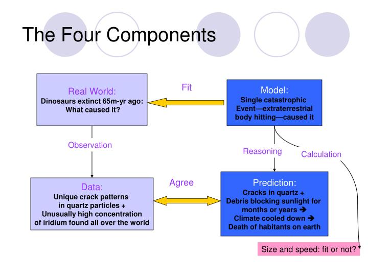 The four components