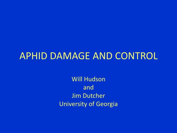 aphid damage and control n.