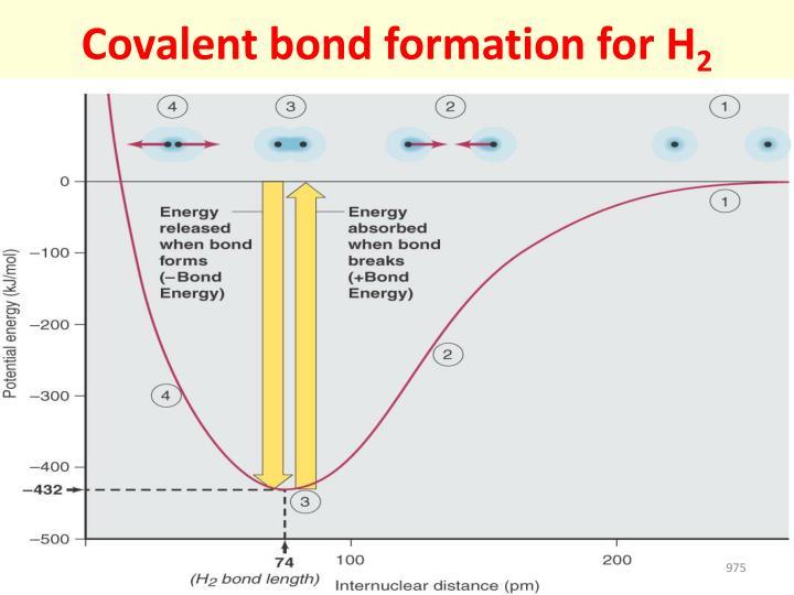 Covalent bond formation for H