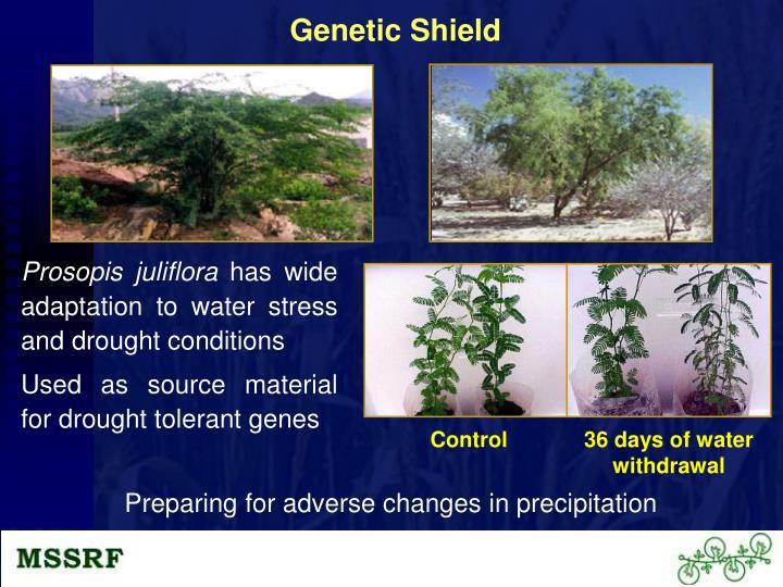 Genetic Shield
