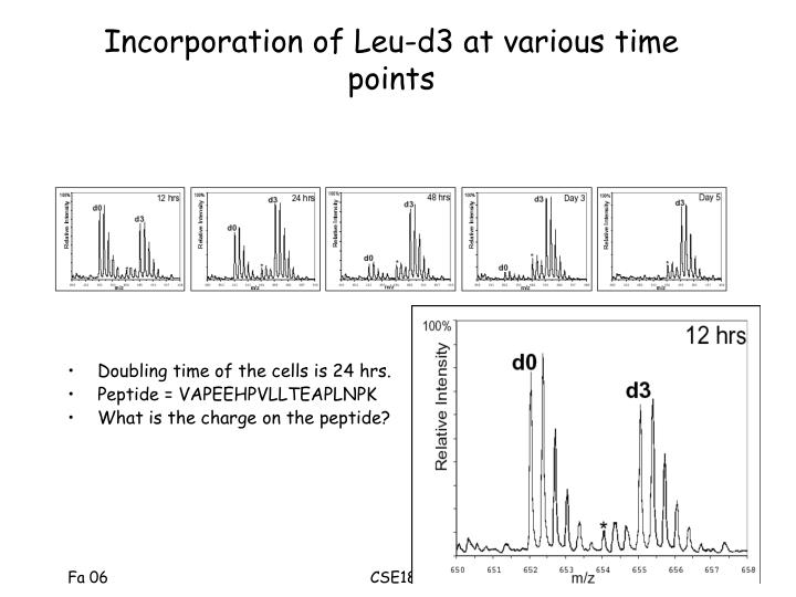 Incorporation of Leu-d3 at various time points