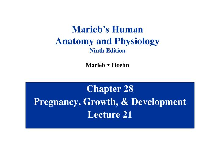 chapter 28 pregnancy growth development lecture 21