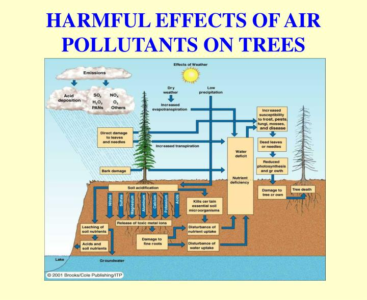 environmental science air pollution Ap environmental science labs:  parts of nc that aren't in compliance with the standards of the clean air act aren  and manufacturers that produce pollution .