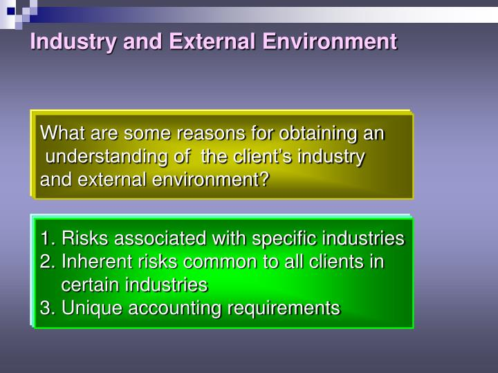 Industry and External Environment