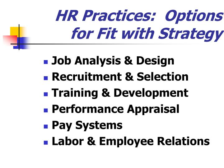 HR Practices:  Options for Fit with Strategy