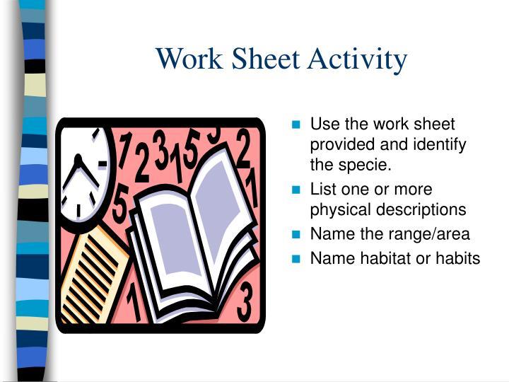 Work Sheet Activity