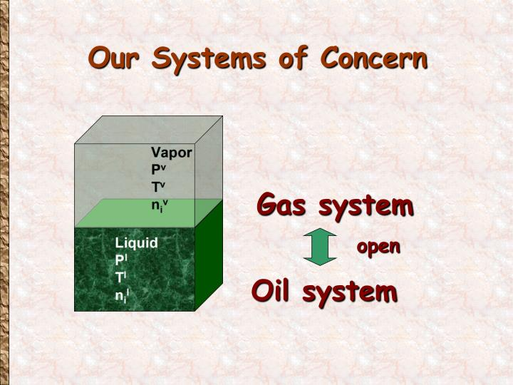 Our Systems of Concern