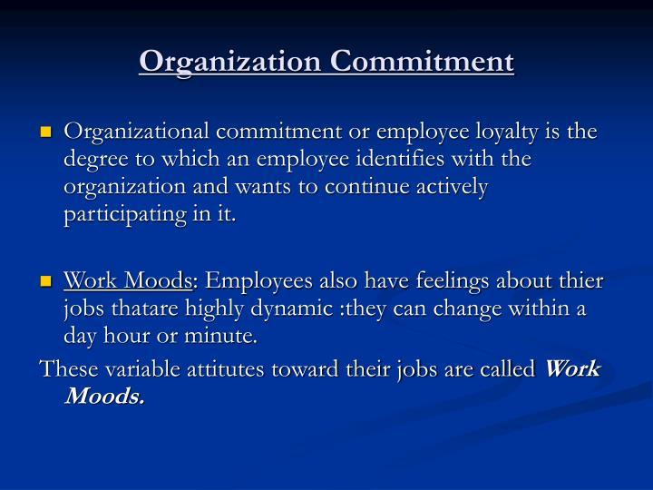 Organization Commitment