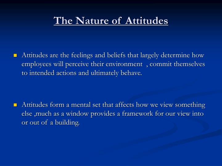 The nature of attitudes