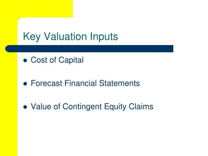 Key valuation inputs