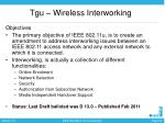 tgu wireless interworking1
