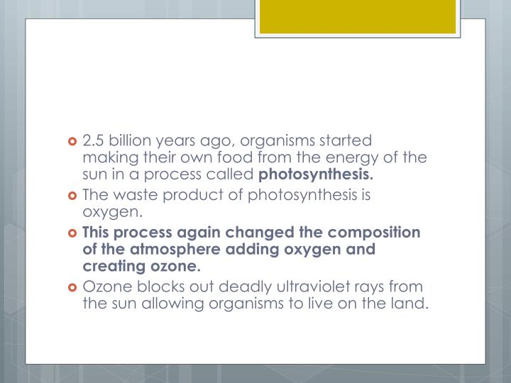 2.5 billion years ago, organisms started  making their own food from the energy of the sun in a process called