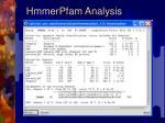 hmmerpfam analysis