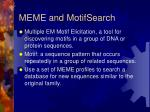 meme and motifsearch