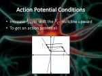 action potential conditions