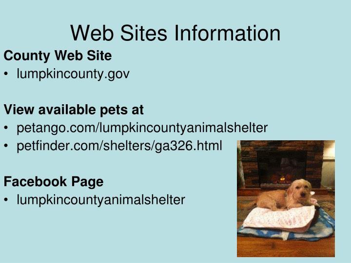 Web Sites Information