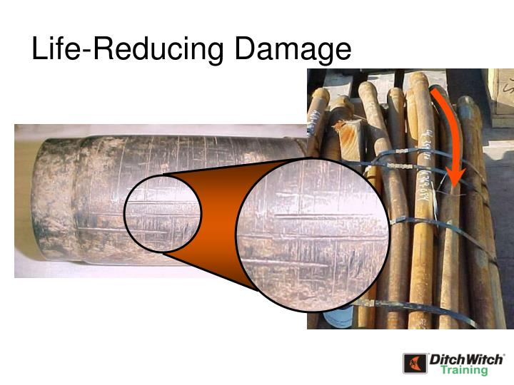 Life-Reducing Damage
