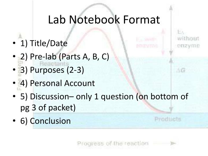 lab notebook format - Kubre.euforic.co