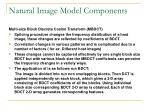 natural image model components