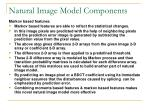 natural image model components2
