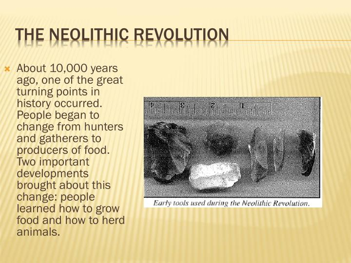 what is the importance of the neolithic revolution
