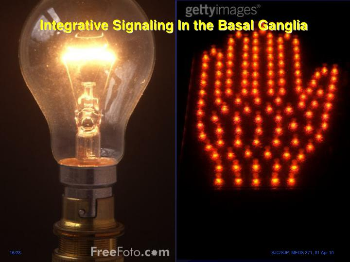 Integrative Signaling In the Basal Ganglia