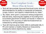 non compliant goals motor fine gross