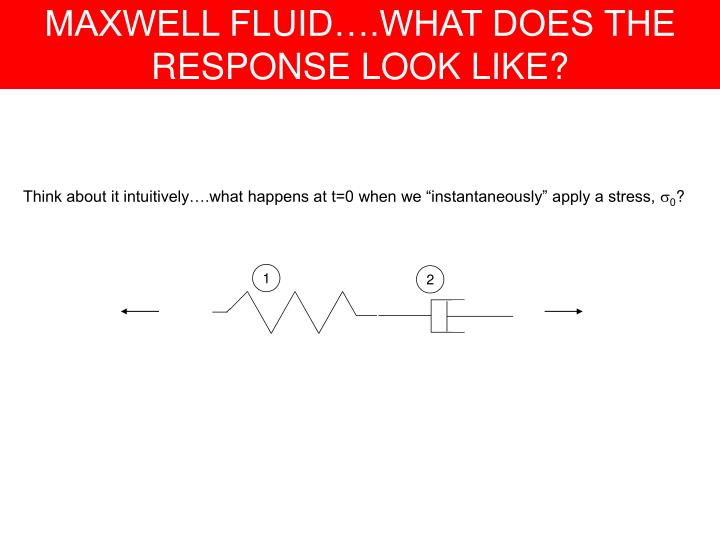 MAXWELL FLUID….WHAT DOES THE RESPONSE LOOK LIKE?