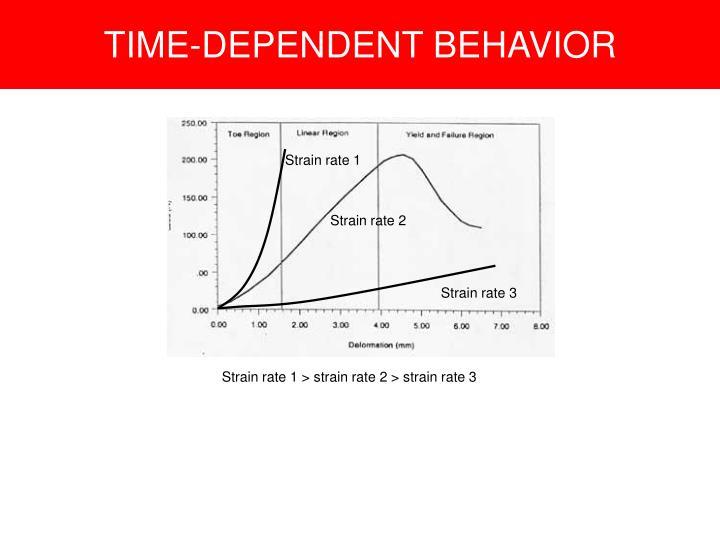 TIME-DEPENDENT BEHAVIOR