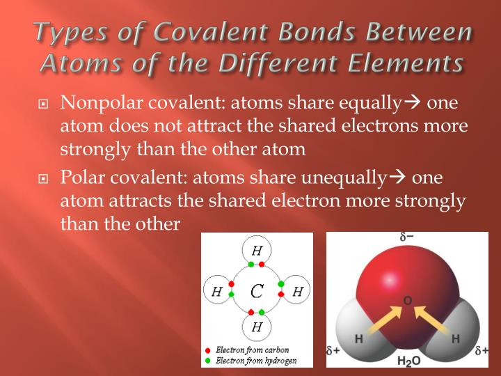 Types of Covalent Bonds Between Atoms of the
