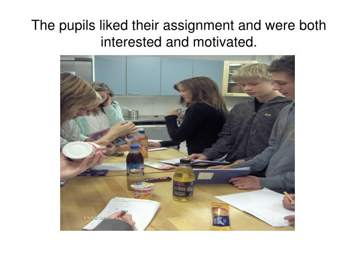 The pupils liked their assignment and were both interested and motivated.