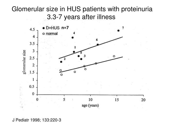 Glomerular size in HUS patients with proteinuria