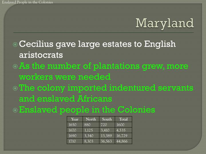 Enslaved People in the Colonies