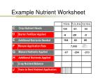 example nutrient worksheet4