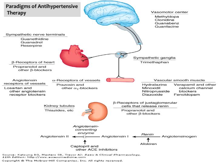 Paradigms of Antihypertensive