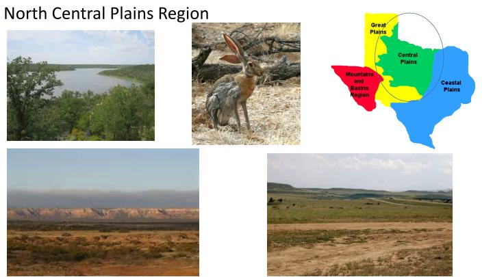 North Central Plains Region