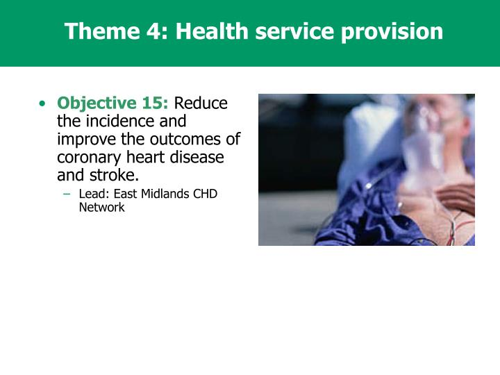 Theme 4: Health service provision