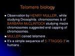 telomere biology