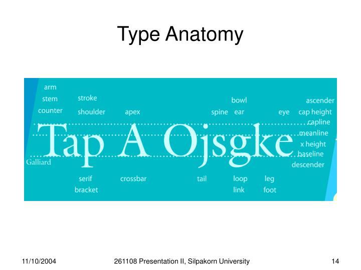 Type Anatomy