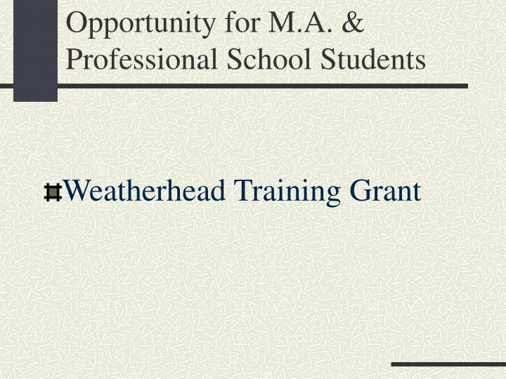 Opportunity for M.A. & Professional School Students