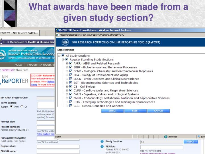 What awards have been made from a given study section?