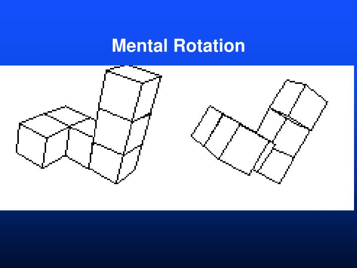 Mental Rotation