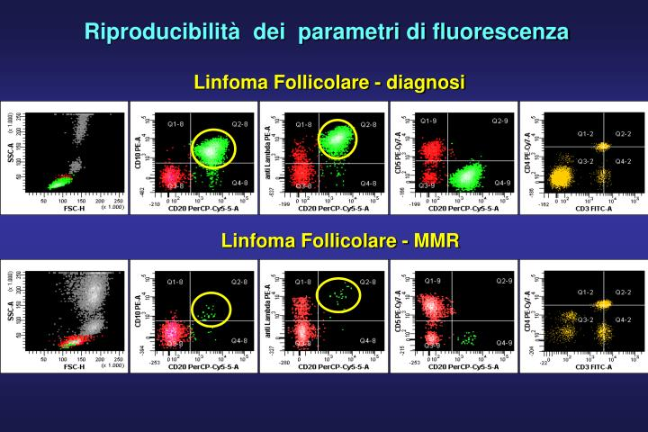 Riproducibilità  dei  parametri di fluorescenza