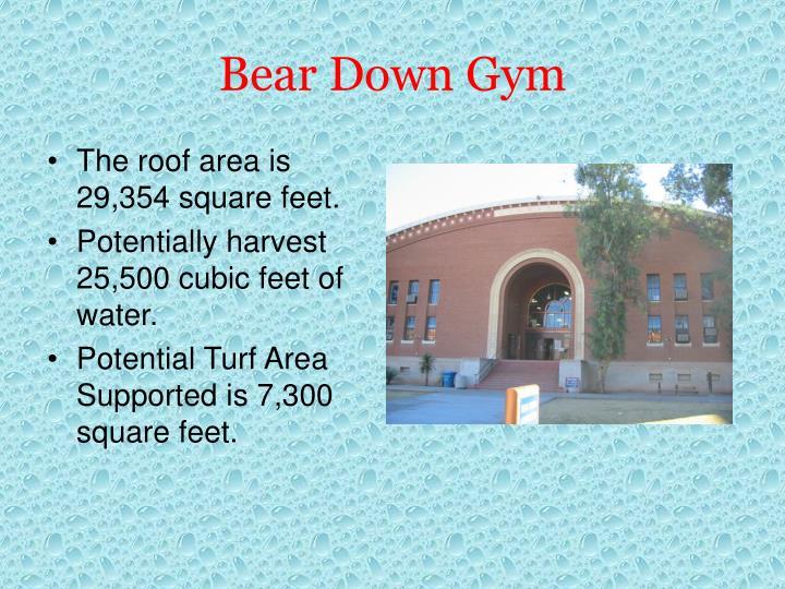 Bear Down Gym