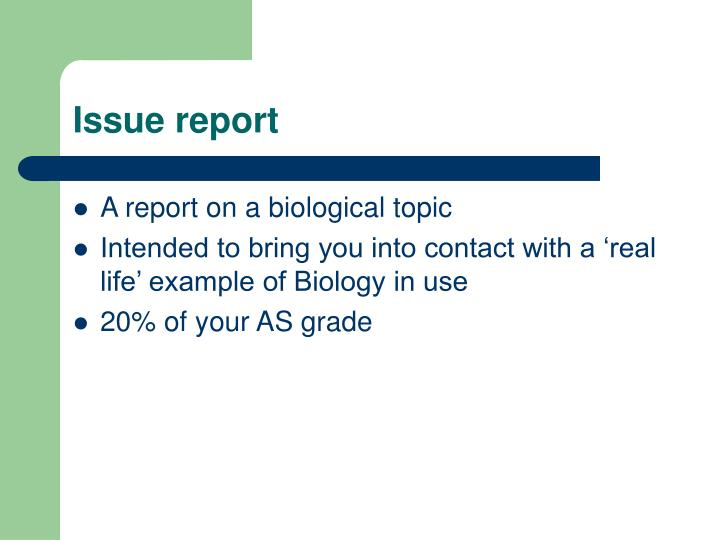 Issue report