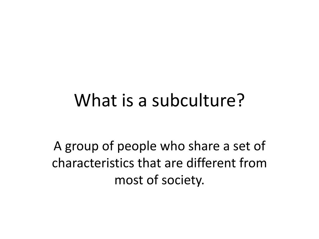 What is a subculture